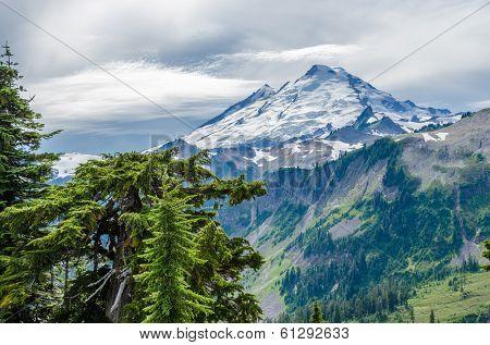 Beautiful Mountain Artist Ridge Trail Park. Mount Baker, Washington, USA.
