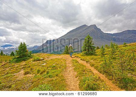Hiker On A Mountain Pass