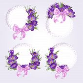 Labels with purple crocus flowers
