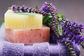 stock photo of purple sage  - natural sage soap with fresh sage  - JPG