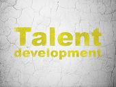 Education concept: Talent Development on wall background