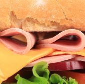 Close up of fresh sandwich with ham.