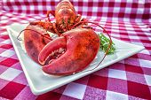 picture of lobster tail  - Cooked lobster on a platter on a gingham tablecloth - JPG