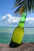 Closeup of a beer bottle stuck in the in the sand on a tropical beach. The ocean clouds and a single