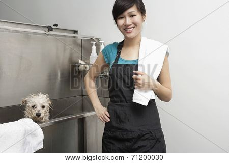 Portrait of beautiful pet groomer with Terrier dog in sink