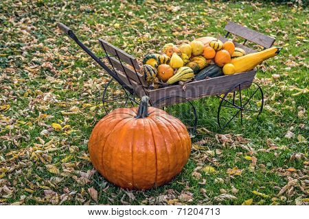 A large pumpkin and a hand cart full of autumn gourds on a leafy lawn.