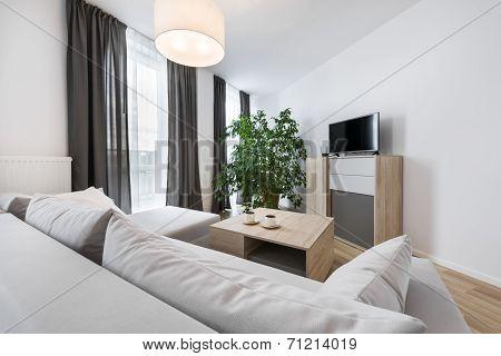 Modern Interior Design: Living Room
