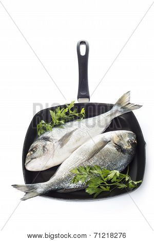 Two Gilt-head Sea Bream Fishes On A Pan Isolated