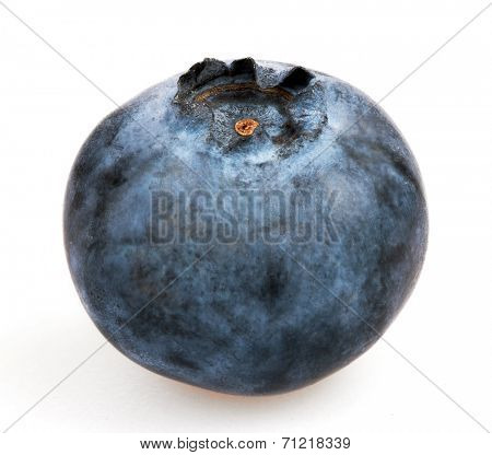Blueberry in closeup, isolated on white