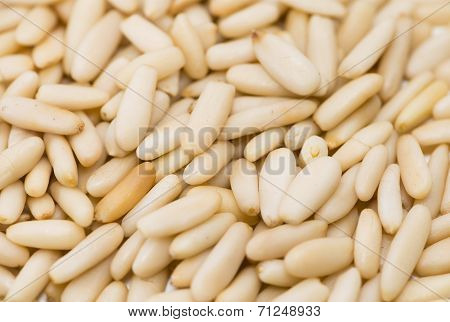 Pine Nuts Background Image