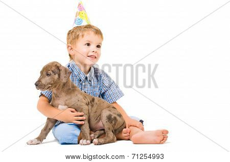 Boy and puppy pitbull of given a present to birthday