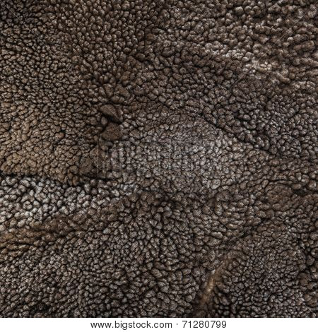 Sheep Fur Texture, Mouton (manufactured Sheepskin) Background