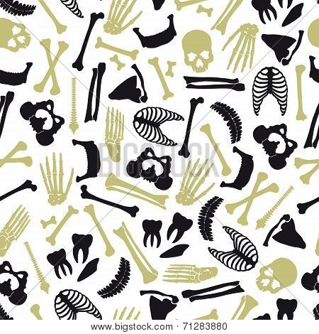Human Bones Symbols Seamless Pattern Eps10