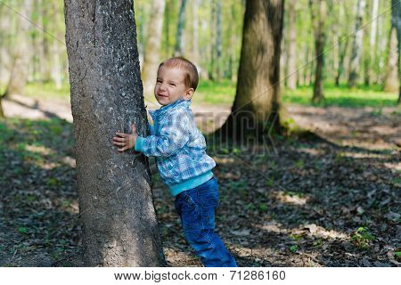 little cute boy hugging a big tree during a walk in the woods