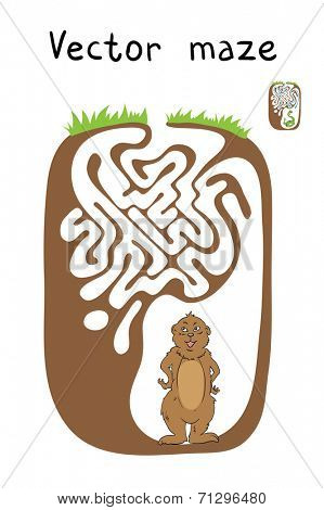 Vector Maze, Labyrinth education Game for Children with Marmot.