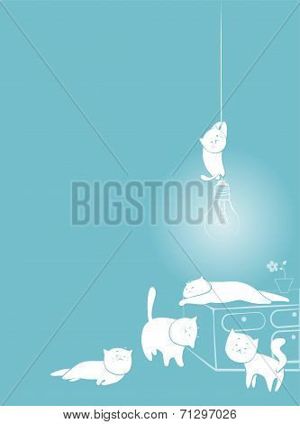 playful white cats card