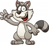 picture of raccoon  - Cartoon raccoon - JPG