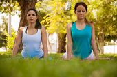 foto of cobra  - Pretty Latin women practicing the cobra pose during their yoga training outdoors