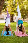 picture of do splits  - Young women practicing a standing split while doing yoga at a park - JPG
