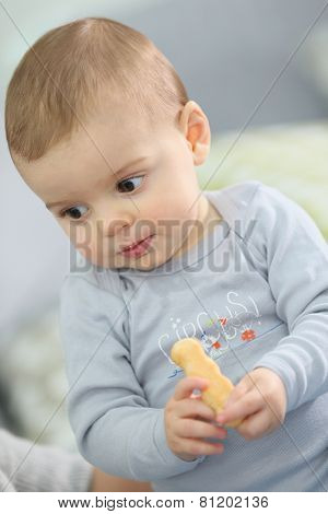 Portrait of cute baby boy eating child biscuit