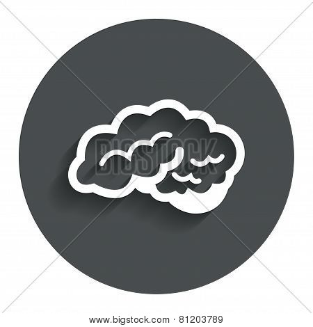 Brain sign icon. Intelligent smart mind.