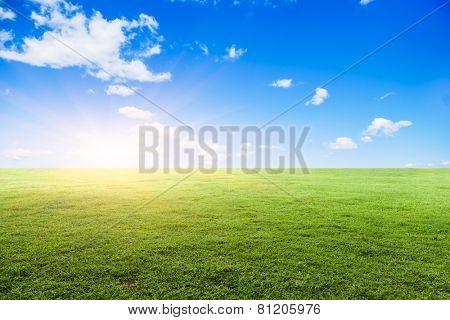 Grassland under the blue sky