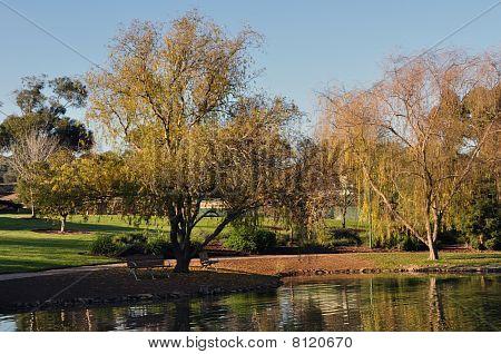 Neville Arboretum