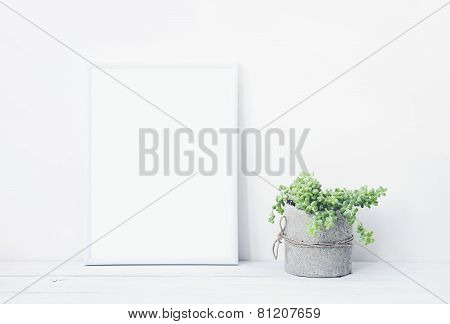 White Frame With Place For Text  With Succulent In Diy Concrete Pot. Skandinavian Style Room Interio