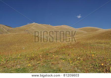Ala Archa In Kyrgyzstan