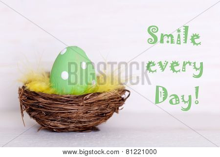 One Green Easter Egg In Nest With Life Quote Smile Every Day