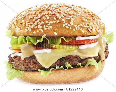 Hamburger isolated on a white background.