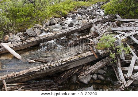 Old Timbers Across Creek