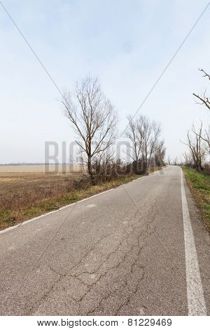 Typical Italian countryside of the po delta