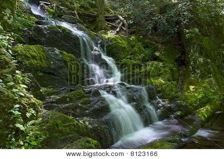 Flowing Buttermilk Falls