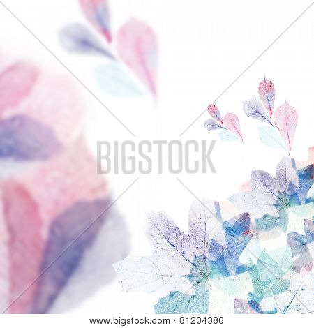 Delicate colored leaves with space for your text