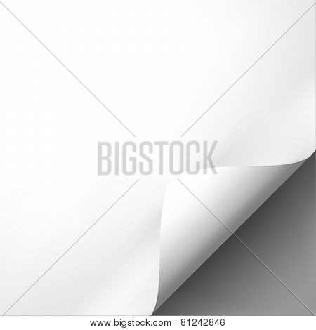 Curled white paper corner mockup template.
