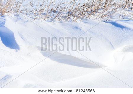 Snow Hills Field