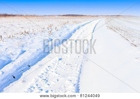 Snow Field Road Landscape