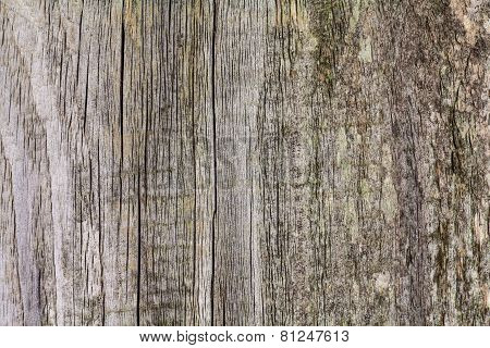 Rusted wood