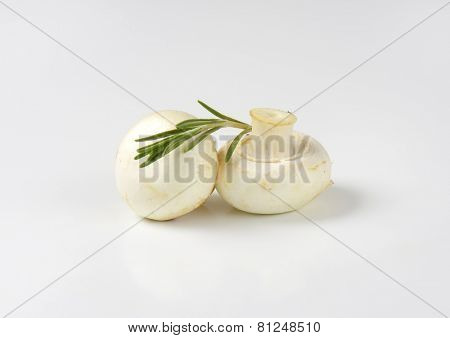pair of fresh mushrooms with rosemary