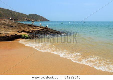 Buzios Beach, Brazil