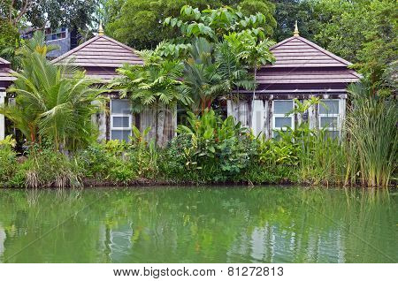 Houses, buried in verdure, on the shore of the pond