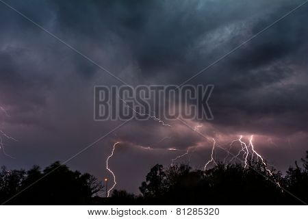 Multiple Cloud to Ground Lightning