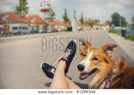 Girl And Her Dog Traveling