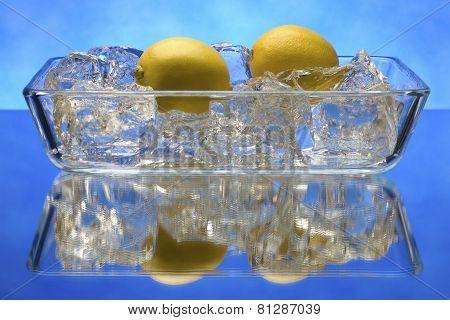 Lemons on ice