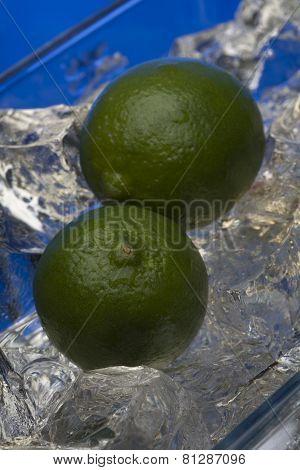 Fresh limes in studio