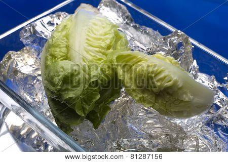 Fresh salad on ice
