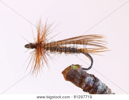 Brown Fly Fishing Lure, Caddish Fly Imitation
