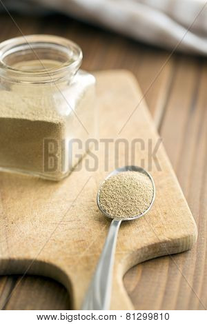 the dry yeast in spoon