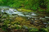 stock photo of gatlinburg  - Peaceful mountain stream flows through the pristine wilderness of the Great Smoky Mountains National Park - JPG